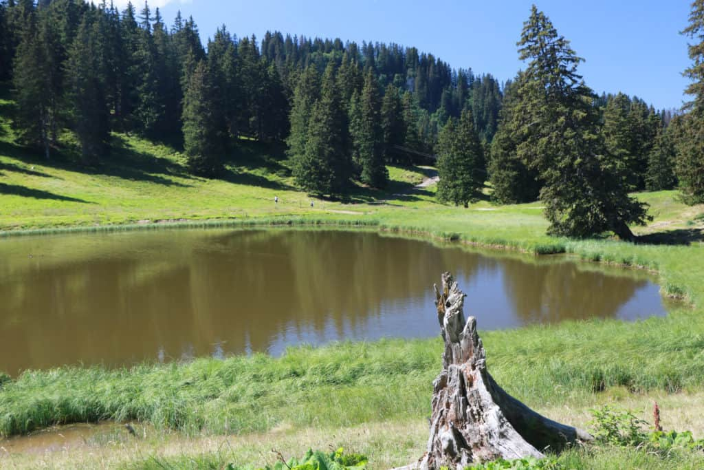 Lake above Super Chatel in the summer