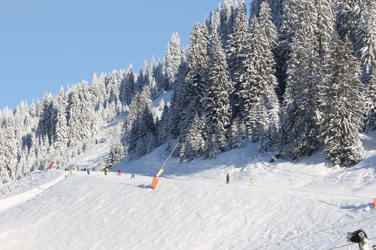 skiers in the portes du soleil