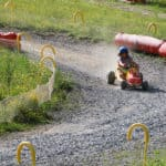 Cart track at Pre-la-Joux