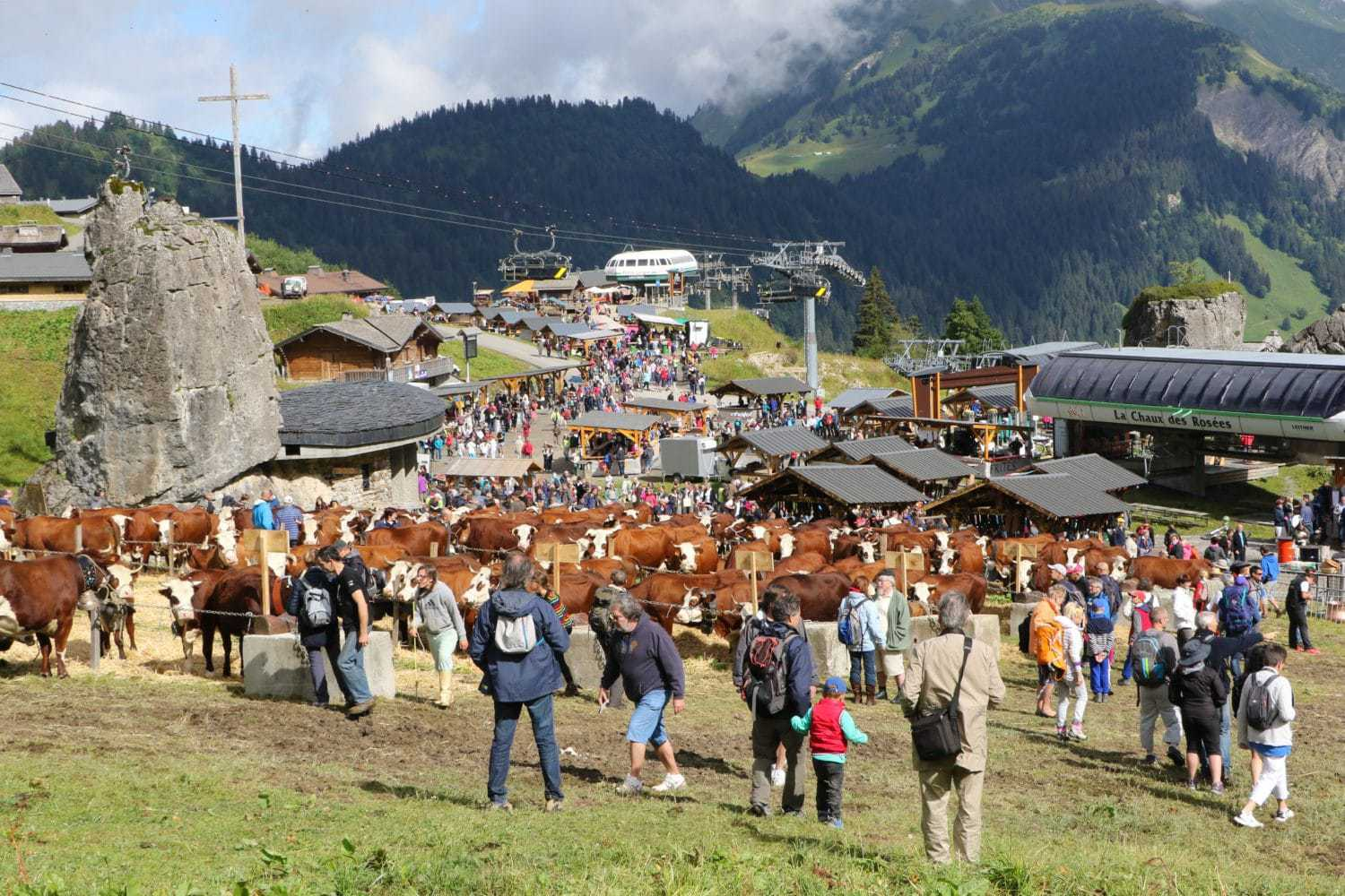 Cows and people at Belle Dimanche in Chatel