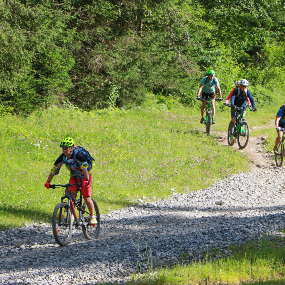 family biking holiday in the portes du soleil from a luxury chalet