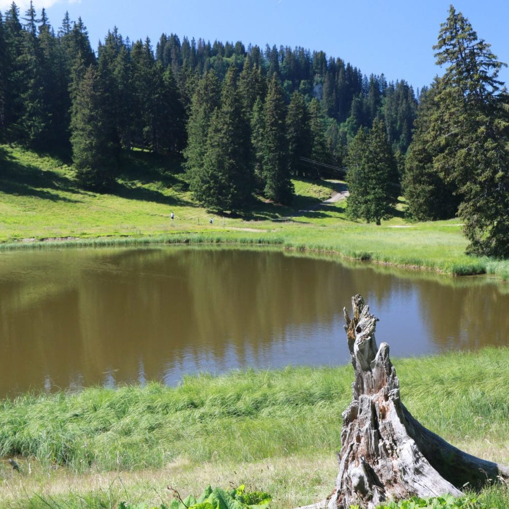 The lake above Super Chatel in the summer