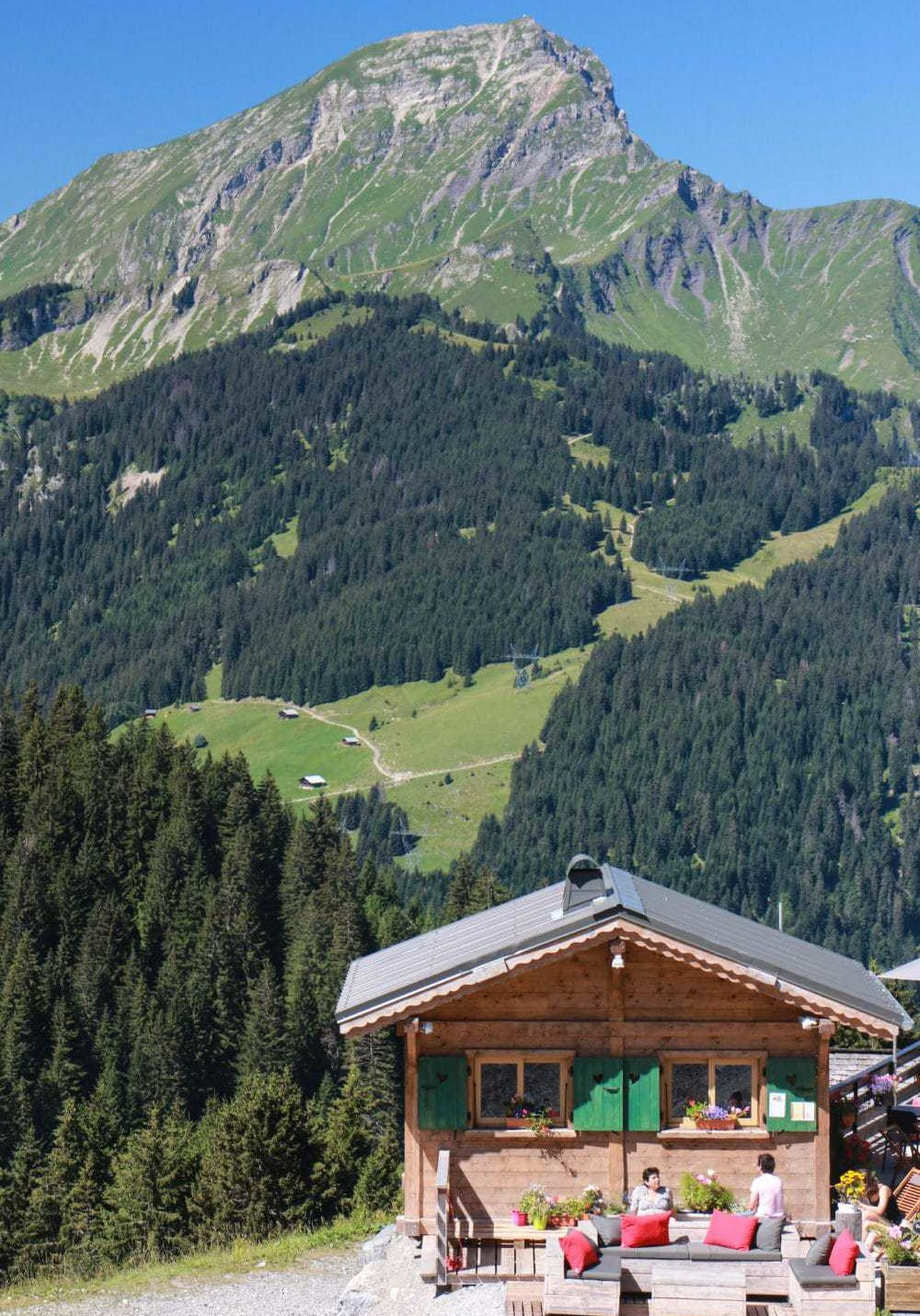 A view over Mont de Grange from Super-Chatel in summer